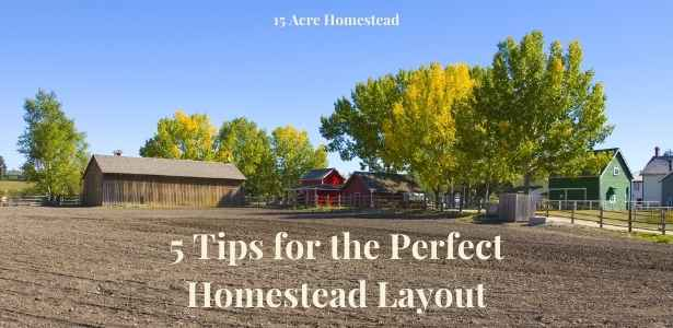 perfect homestead layout