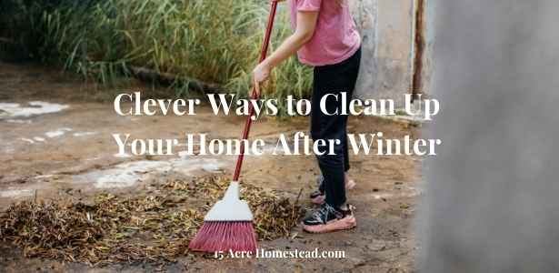 Clean up your home featured image
