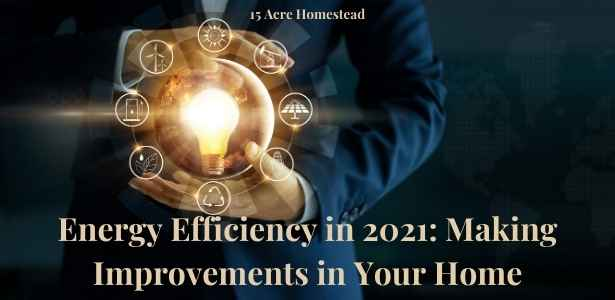energy efficiency in 2021