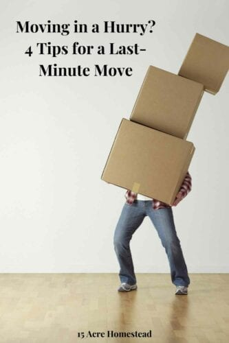 Moving is a very complex and stressful process, but it is even worse and more stressful if you are forced into a last-minute move. Waiting for the last minute to move is a scenario nobody prefers, but it is still a reality for lots of people who are forced to do things this way.