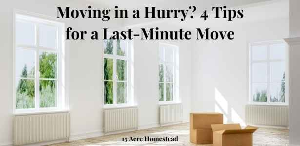 Last-minute move featured image