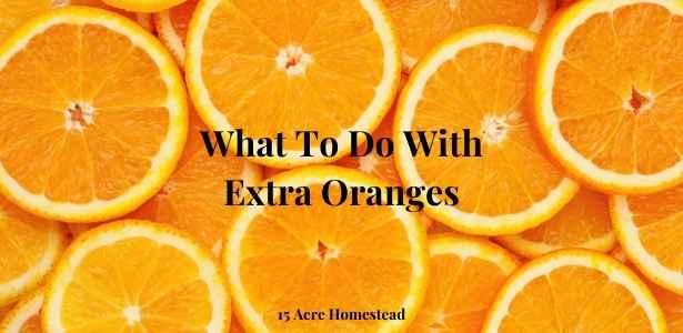 extra oranges featured image