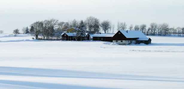 homestead in the winter
