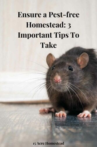 These easy and simple but imp[ortant tips may help you ensure a pest-free homestead.