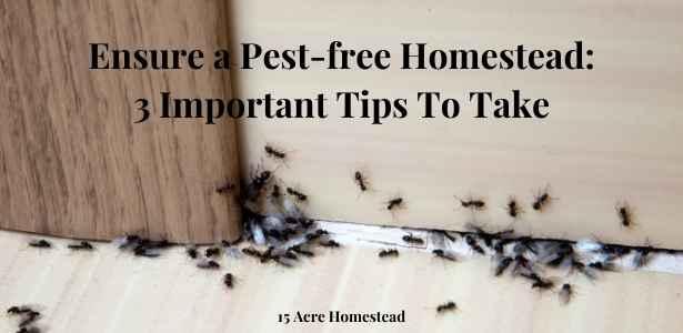 pest-free homestead