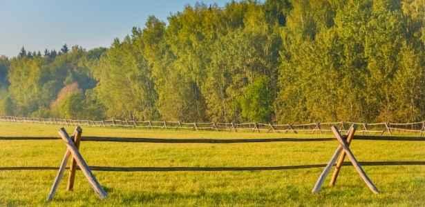 homestead property