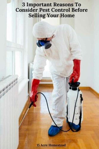If you want to sell your home you must consider pest control.