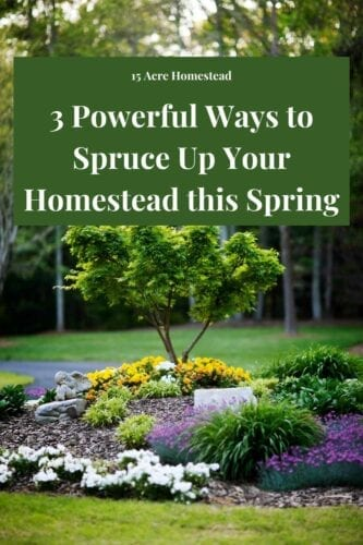 Spruce up your homestead with these powerful tips you may not have considered.