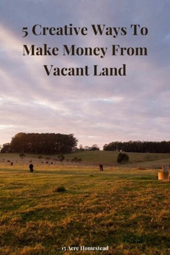 Got some empty land that could be put to use? It's possible to make money from vacant land by turning it into an extra form of income.