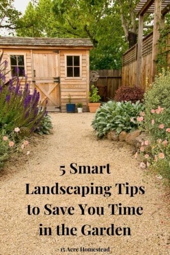 Increase the beauty of your landscape at your home with these 5 smart landscaping tips today.