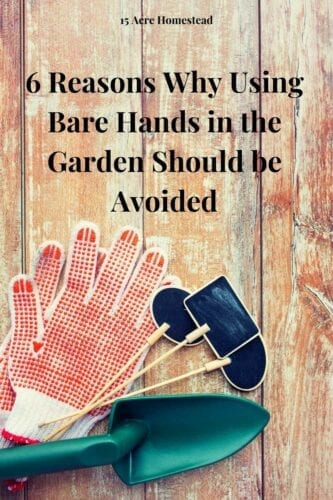 Learn a few of the many reasons why you should avoid using your bare hands in the garden and instead make use of some good gardening gloves.