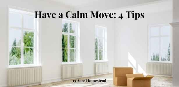 calm move featured image