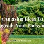 upgrade your backyard featured image