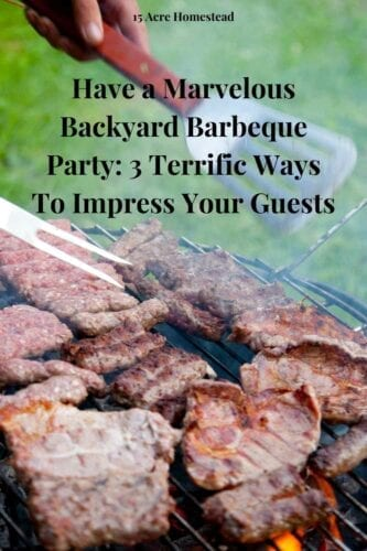 Here are all the steps for you to have a successful barbeque in your backyard. From music to the food it is all here!