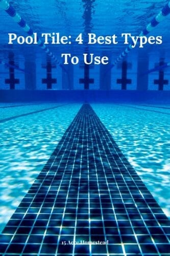 The surrounding areas of the pool decide the functionality, aesthetics, and safety of the swimming space. One of the most appealing features that make your pool area unique is the selection of the pool tile. Different kinds of tiles serve a unique purpose.