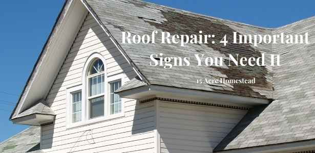 roof repair featured image