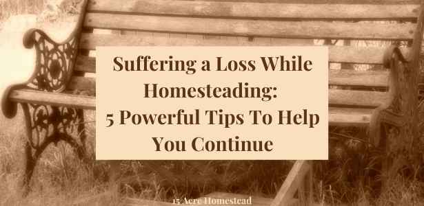 suffering a loss featured image