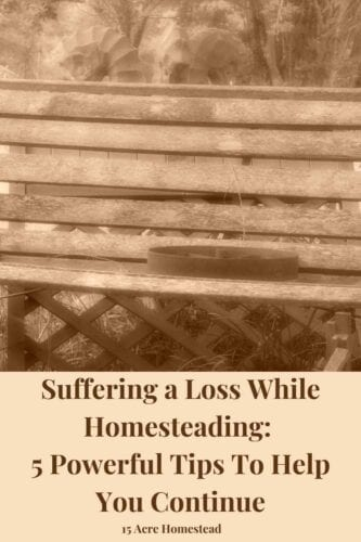 Suffering a loss such as the death of a child can change your whole world. In this post, I share my story of losing my 26-year-old son and how I am trying to move forward and continue my journey. Hopefully, this will help others.