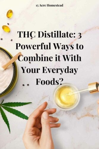 If you are new to THC distillate, you must still be in doubt as to what these are and how you can use them? Well! Keep your curiosity level up, as we will be revealing all the answers shortly.