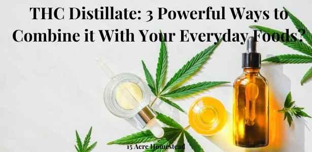 THC distillate featured image