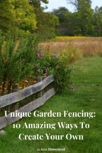 Garden fencing seems to be a necessity on the homestead, especially if you live on a homestead that is frequently visited by animals of the wild. If you had to install fencing then you already know how expensive it can be. As a homesteader on 15 acres of rural property and living close to a national forest, fencing is a must-have.