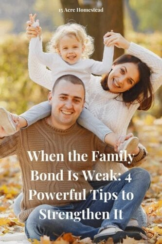 The family bond, just like any other relationship, has to be worked on for you to be happy together. Nowadays, families can share the same space but not enough time with each other.