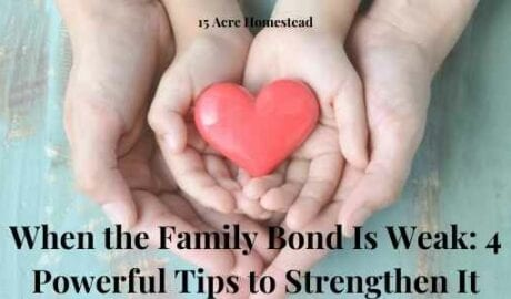 family bond featured image