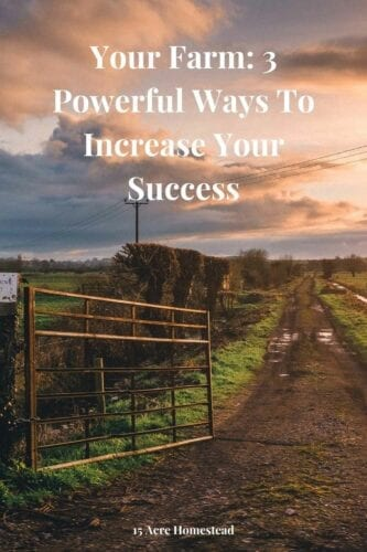 once you are done remodeling or just settling into the house, it is time to evaluate the valuable farm you own and figure out the best way to treat it for it to be successful..