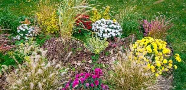 Mulch in flower beds