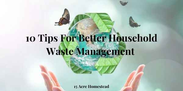 waste management featured image
