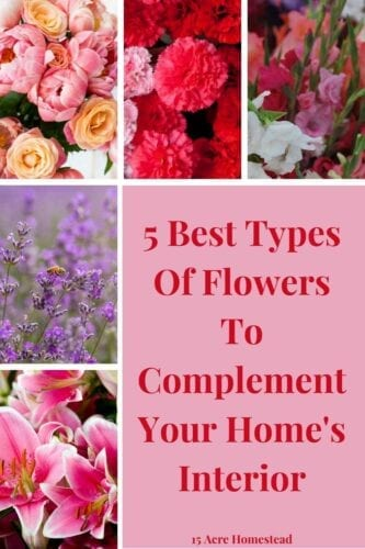 There's something intricately special about flowers—they're an instant mood lifter and day brightener. Flowers aren't only perfect for special occasions, but also as decorations for your home's interior.
