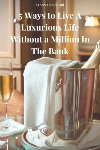 If you want to live a luxurious life but do not have the money, here are 5 ways you can live a life without the millions in the bank.