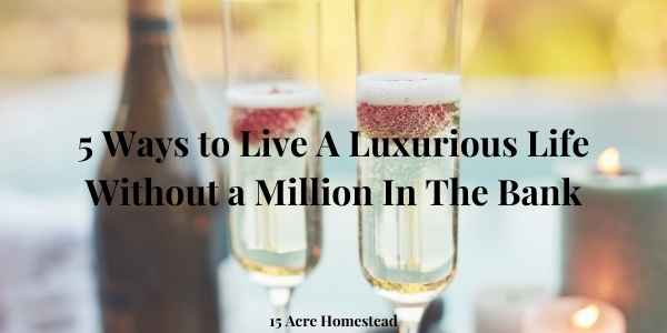 luxurious life featured image