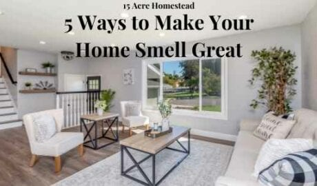 make your home smell great featured image