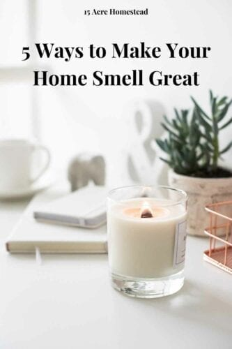 Everybody wants to have a home that smells inviting as soon as they enter it. As you can imagine, that isn't always the case, and many things can cause your abode to have a foul-smelling odor. The thing is, to make your home smell great isn't as hard as it seems.