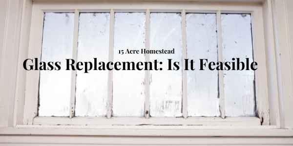 glass replacement featured image