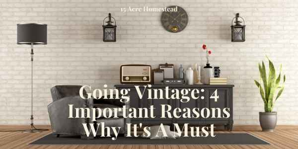 When you are looking to add some new and exciting furniture pieces to your property, one thing that you are going to need to think about is what style you are going to go for. Why not consider going vintage?