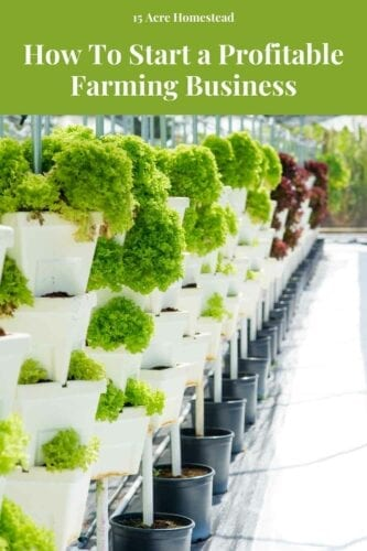 Farming is continually becoming a lucrative venture that is earning many individuals around the world substantial profits. Apply these tips to start a profitable farming business.