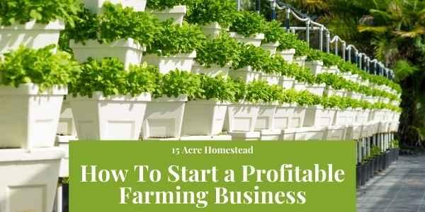 profitable farming business