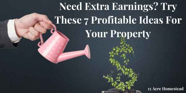 extra earnings featured image