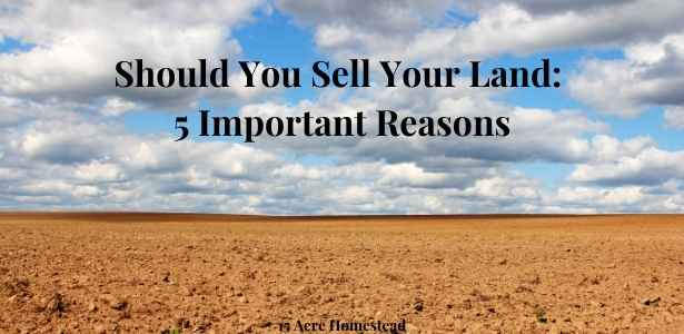 Sell Your Land featured image