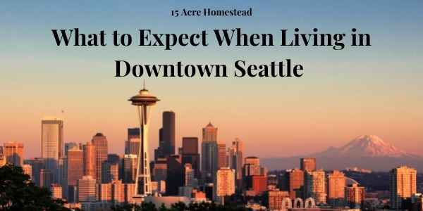seattle featured image