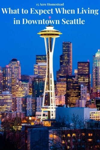 Seattle is the home of aerospace giant Boeing and a growing number of high-tech employers. That's why it had the third-highest annualized growth rate among large U.S. cities in 2020. But what is it like to live here? Here's an overview of what to expect when living in downtown Seattle.
