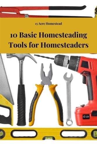 Anything can happen when you're off the grid, that's why first-time homesteading families need to be prepared. We have the 10 basic homesteading tools every first-time homesteader needs to become a creator for their little garden and house of dreams.