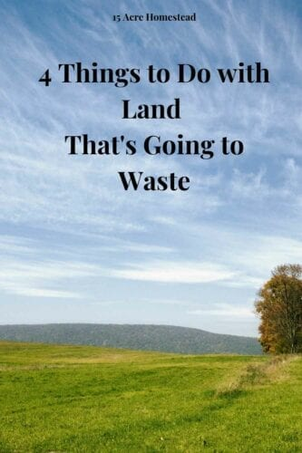 Having land you're not using for anything is annoying. It's a shame to let it go to waste, but you might be unsure about how to use it.