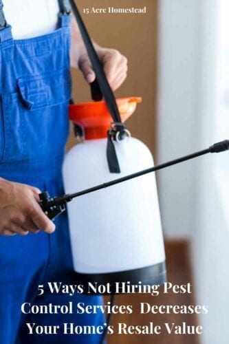 For thorough and safe removal of the pests, the right way to go about it is through pest control services rather than temporary or harmful DIY methods that may cause further damage to the property and its residents than fix it.
