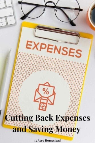 There are so many ways for you to start cutting back expenses on the homestead. Check out 3 simple ways right here.