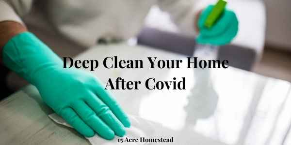 deep clean featured image