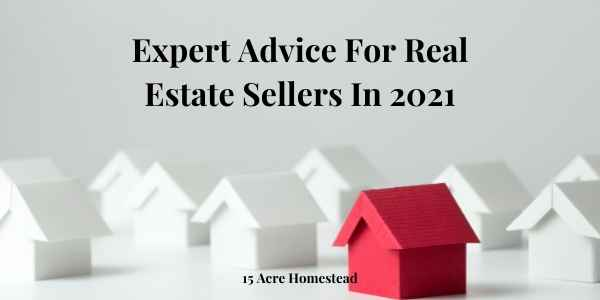 expert advice featured image