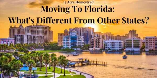 moving to florida featured image